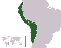 Znázornění velikosti incké říše v roce 1527