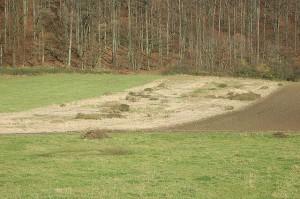 Úhor nazýváme část pole, které není daný rok obdělávané (leží ladem)